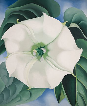 Georgia O'Keeffe, Jimson Weed/White Flower No. 1, 1932. Oil on canvas, Crystal Bridges Museum of American Art, Bentonville, Arkansas, 2014.35. Photograph by Edward C. Robison III. © Georgia O'Keeffe Museum / Bildrecht, Wien, 2016